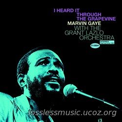 Marvin Gaye & the Grant Lazlo orchestra - I heard it through the grape